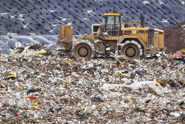 Karen Laslo, The Landfill
