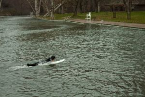 Sycamore Pool and Surfer