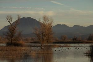 North side of Sutter Buttes as seen from Gray Lodge Wildlife Refuge