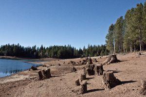 Paradise Lake #3