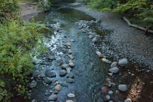 Chico Creek, 9/14, shrunk down because of the drought.