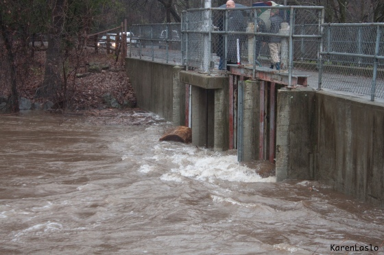 The flood gates at Five Mile. A large log washed down from up-stream bangs into the gates.