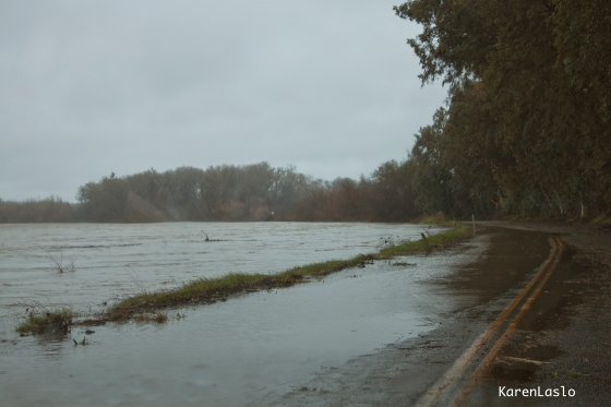 "Sacramento River at the ""Wash-out."""